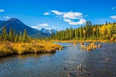 Vermelhões bonitos dos lagos em Banff Fotos de Stock