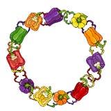 Vermelho, alaranjado, amarelo, verde, roxo, Violet Bell Peper Wreath Metade da paprika e de anéis doces de cortes da pimenta Madu Imagem de Stock