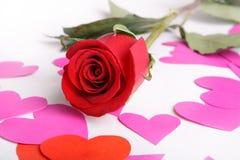 Vermelho cor-de-rosa e cartão Fotos de Stock
