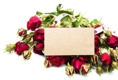 Vermelho cor-de-rosa e cartão fotografia de stock