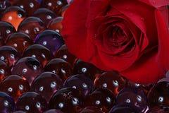 Vermelho cor-de-rosa e mármores foto de stock royalty free
