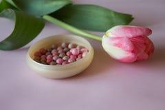 Vermelho cosmético cor-de-rosa com a tulipa cor-de-rosa no fundo cor-de-rosa foto de stock royalty free