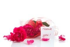 Vermelho de Rosa com gratitude Fotografia de Stock Royalty Free