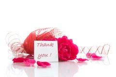 Vermelho de Rosa com gratitude Foto de Stock