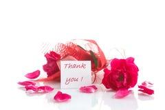 Vermelho de Rosa com gratitude Fotos de Stock