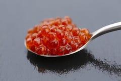 Vermelho do caviar Colher com caviar vermelho em um fundo preto foto de stock