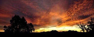 Vermelho e céu do ouro em um por do sol do deserto. Imagens de Stock Royalty Free