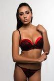 Vermelho e preto Foto de Stock Royalty Free