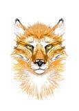 Vermelho, Fox, cabeça, imagem Foto de Stock Royalty Free
