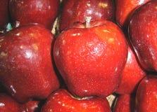 Vermelho - maçãs deliciosas Foto de Stock Royalty Free