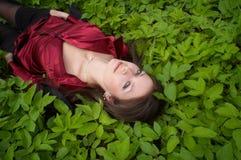 Vermelho no verde Foto de Stock Royalty Free