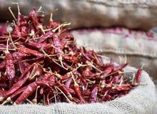 Vermelho quente saco secado da pimenta fotografia de stock