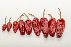 ` Vermelho s dos pimentões em um fundo branco Fotografia de Stock