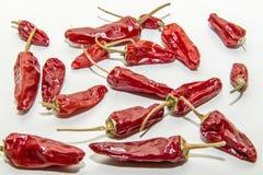 ` Vermelho s dos pimentões em um fundo branco Fotos de Stock Royalty Free