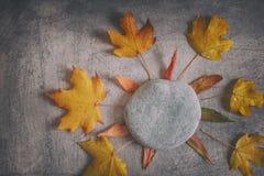 Vermelhos amarelos secam a composição das folhas no fundo arranhado fotografia de stock royalty free