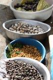 Vermi della farina e crostacei al mercato in Sapa, Vietnam Fotografie Stock Libere da Diritti