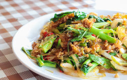 Vermicelli fried. With pork and vegetable Stock Photo