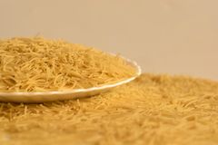Vermicelli lying on a plate and around it. Uncooked vermicelli lying on a plate and around it close-up Royalty Free Stock Image