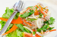 Vermicelli Salad Stock Photography
