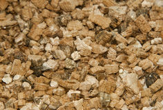 Vermiculite used in potting plants Stock Photography