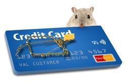 Vermijd creditcardvallen Een gelokt muizeval maakt dit punt royalty-vrije stock foto's