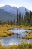 Vermilion Lakes Stock Photo