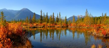 Vermilion lakes landscape in Banff national park royalty free stock photo