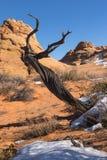 vermillion памятника скал национальный Стоковая Фотография RF