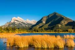Vermillion Jeziornej jesieni Rundle siarczana góra Obraz Royalty Free