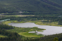Vermillion lake and forest from above, Banff Royalty Free Stock Image