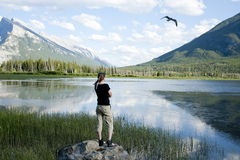 At Vermillion Lakes Royalty Free Stock Image
