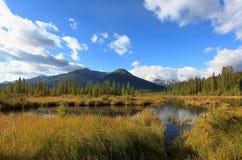 Vermillion lakes, banff alberta Arkivbild