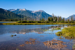 Vermillion lakes Stock Images
