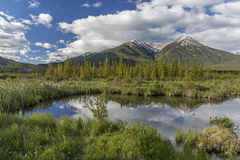 Vermillion Lakes - Banff National Park, Alberta, Canada Royalty Free Stock Photos