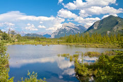 Vermillion Lakes between bushes Royalty Free Stock Photo