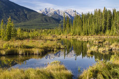 Vermillion Lakes Fenland. Mount Howard Douglas reflected in the still, marshy waters of the Vermillion Lakes near Banff, AB in Banff National Park,  Canada Royalty Free Stock Photo