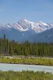 Vermillion River, Kootenay National Park Stock Photography