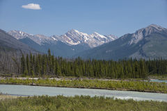 Vermillion River, Kootenay National Park Royalty Free Stock Photography