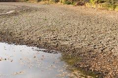Verminderend water en droogte in de vijver stock fotografie
