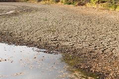 Verminderndes Wasser und Dürre im Teich stockfotografie