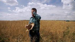 Vermoeide en droevige landbouwer in de canolaaanplanting stock footage