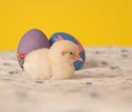 Vermoeide weinig het kuikenslaap van Pasen Stock Afbeeldingen