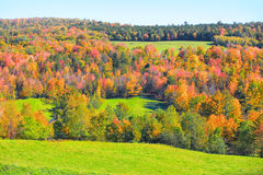 Vermont in autumn time Stock Images