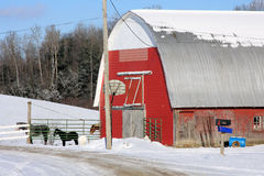 Vermont Barn With Horses Stock Photo