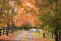 Free Vermont Country Road In Autumn Stock Images - 6989574