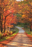 Vermont countryside road during autumn stock images