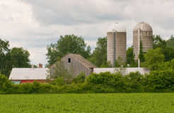 Vermont dairy farm. A quaint dairy from with two silos in the countryside of Vermont (USA Stock Photos