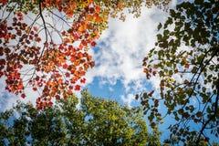 Vermont en otoño Fotos de archivo