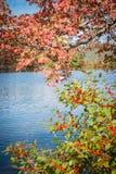 Vermont en otoño Foto de archivo libre de regalías