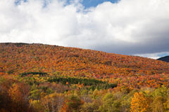 Vermont Fall Foliage Royalty Free Stock Photos